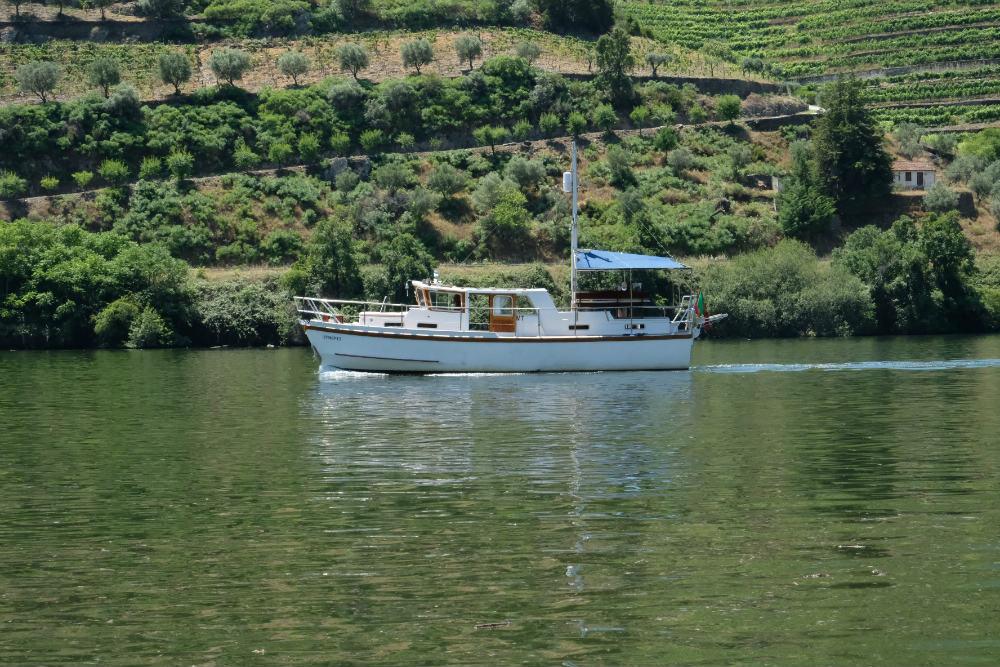 barco Rivus
