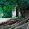 Os 10 jardins mais bonitos de Portugal